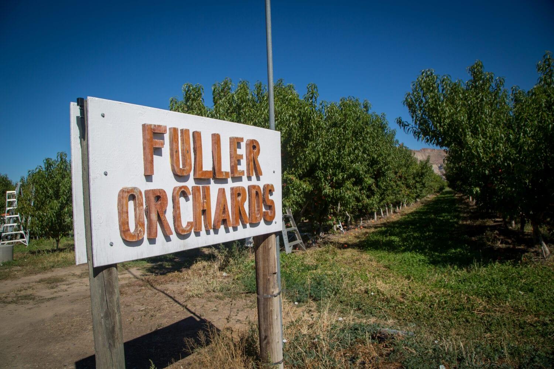 fuller orchards entrance sign