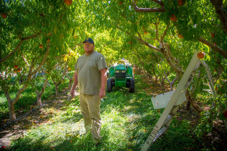 fuller orchards